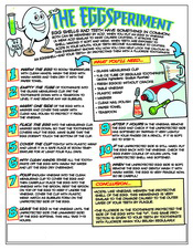 EggSperiment activity sheet